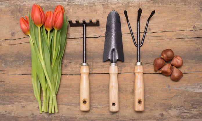 Prace ogrodowe a dobór odpowiednich narzędzi